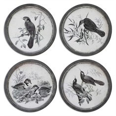 Birds In Nature Framed Art, S/4