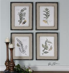 Butterfly Plants Framed Art, S/4
