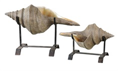Conch Shell Sculpture, Set/2