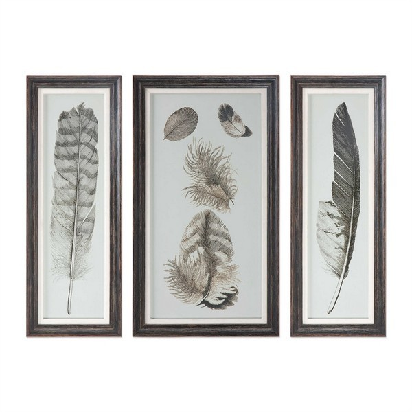 Feather Study Prints, S/3