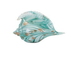 Kingston Glass Shell