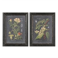 Midnight Botanicals Wall Art S/2