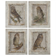 Owls Framed Art, S/4