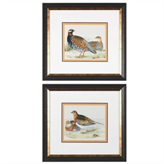 Pair Of Quail Framed Prints, S/2