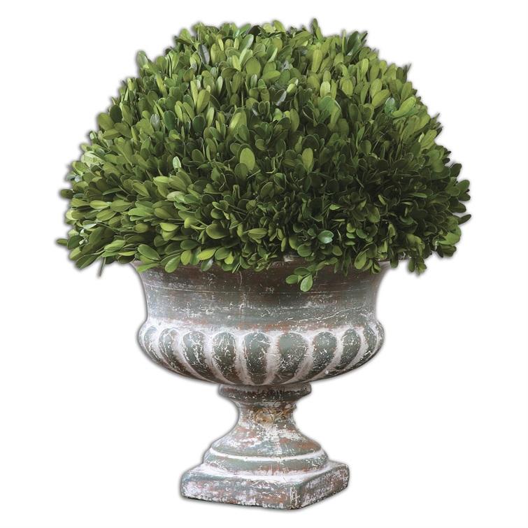 Preserved Boxwood Garden Urn | Uttermost Item 60113