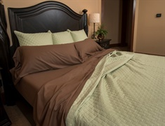 Twin Rayon from Bamboo Sheet Set