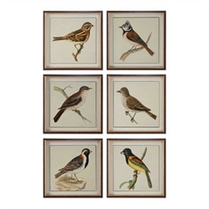 Spring Soldiers Bird Prints, S/6
