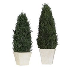 Uttermost Cypress Cone Topiaries, S/2