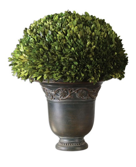Uttermost Globe Preserved Boxwood