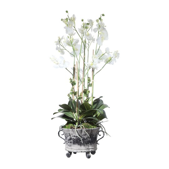 Uttermost Neruda Potted Orchid