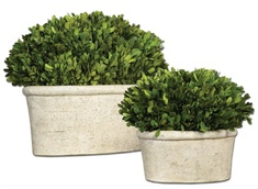 Uttermost Oval Domes Preserved Boxwood Set/2