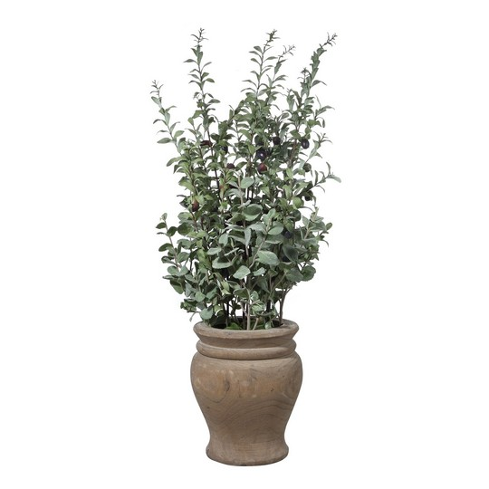 Uttermost Tassos Potted Olive