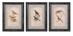 Woodland Bird Wall Décor - Ast 3